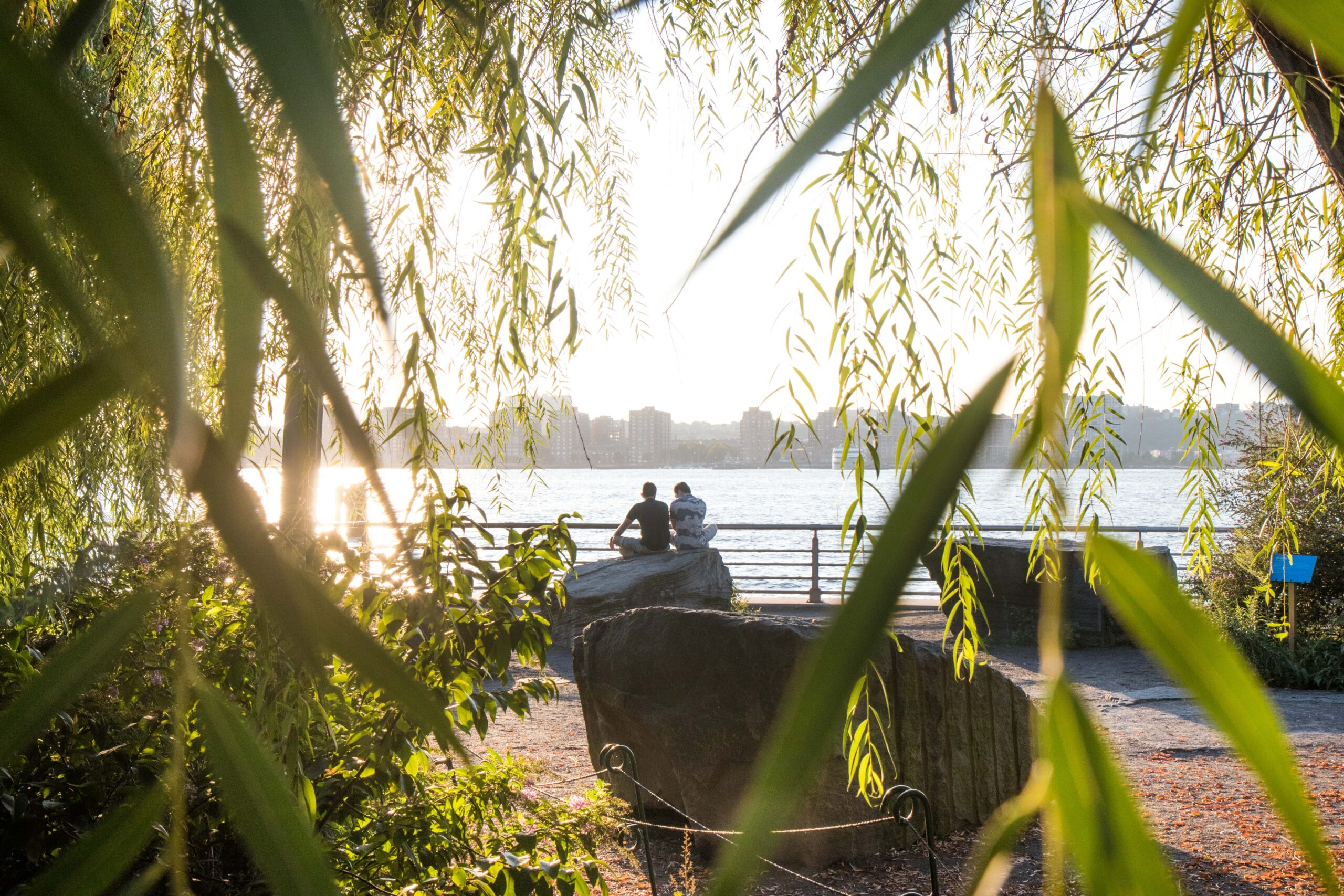 Lush greenery encloses Stonefield and Park visitors can enjoy the sunset and art near Pier 63