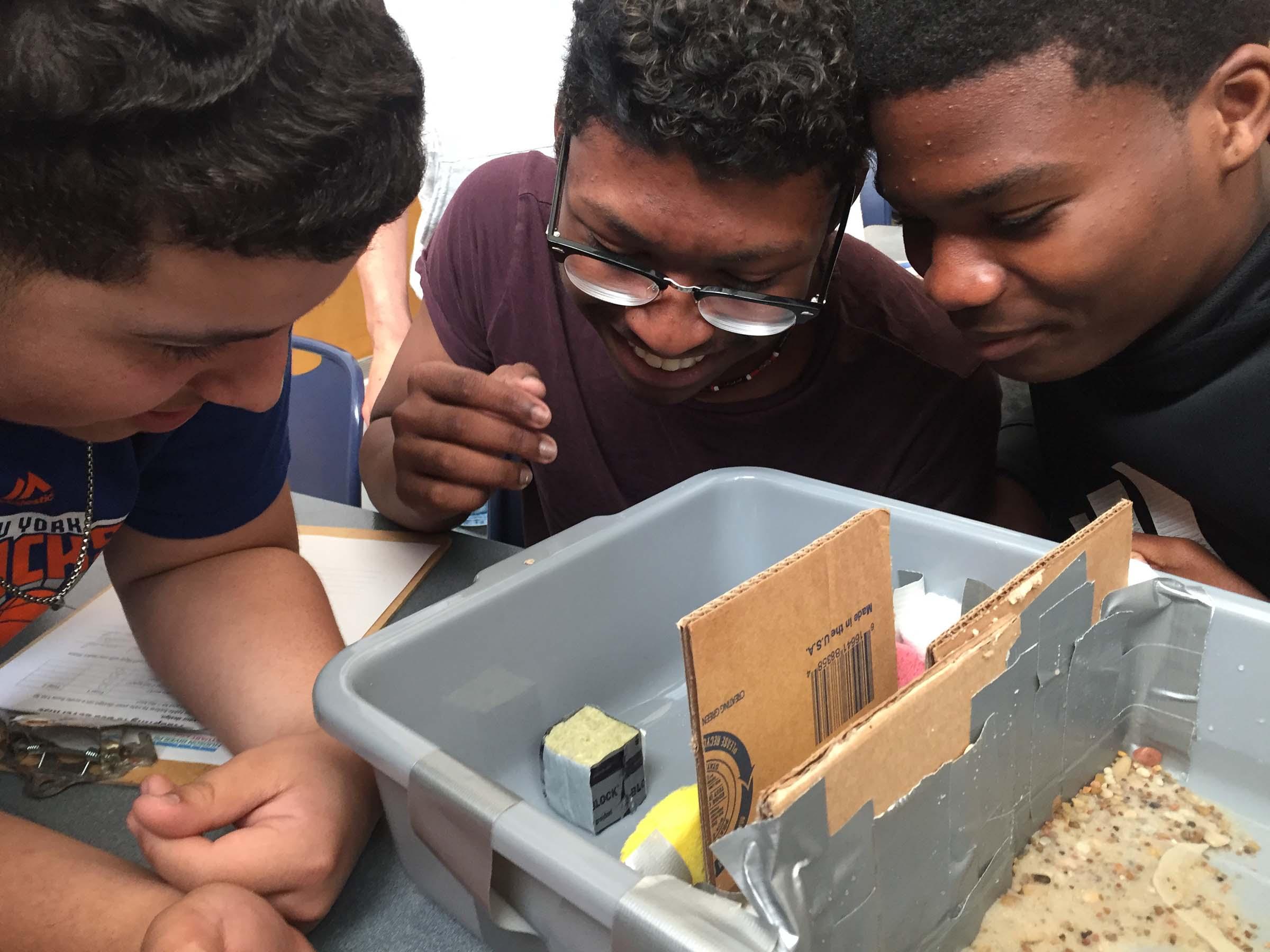 A group of kids build an terrarium