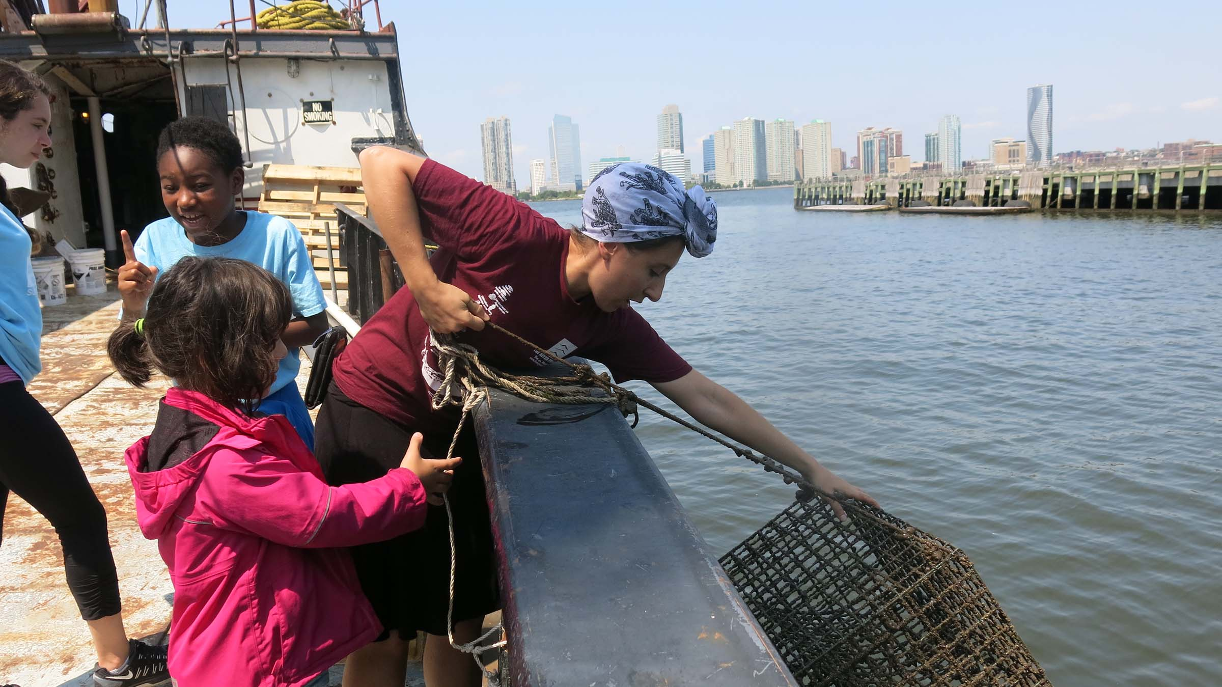 A park educator reaches and pulls in one of the oyster traps