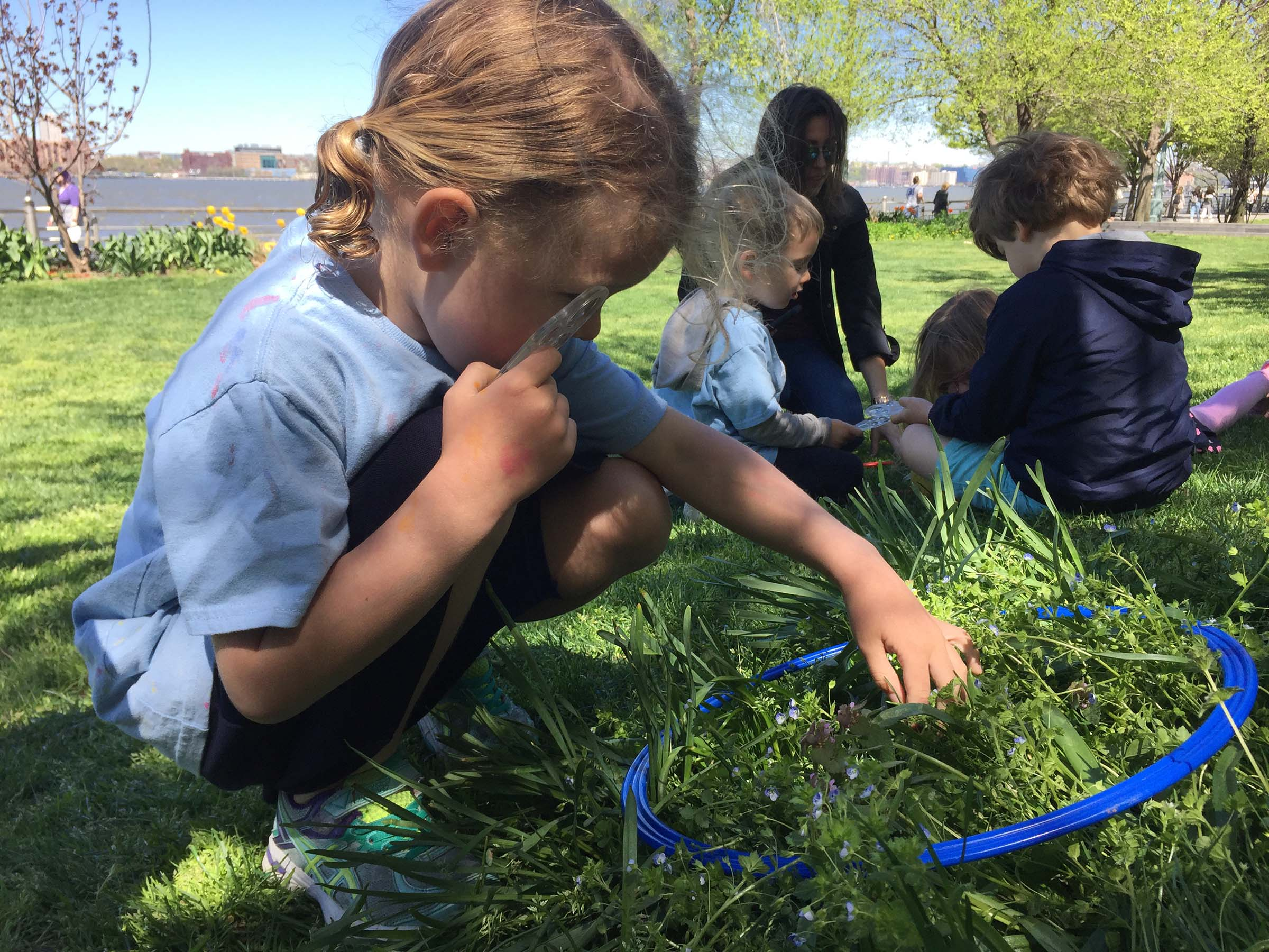 Students look through the grass in Hudson River Park