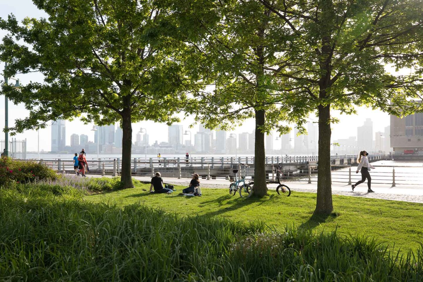 Trees shade Park visitors in Tribeca