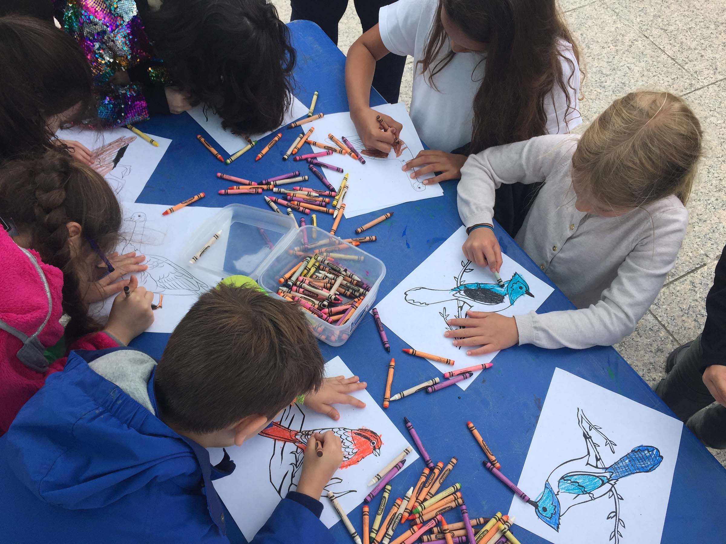 Students color in blue jays and orange orioles