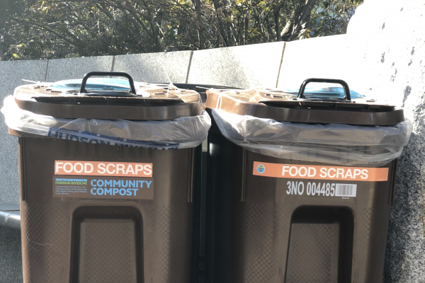 Brown compost bins to throw food scraps