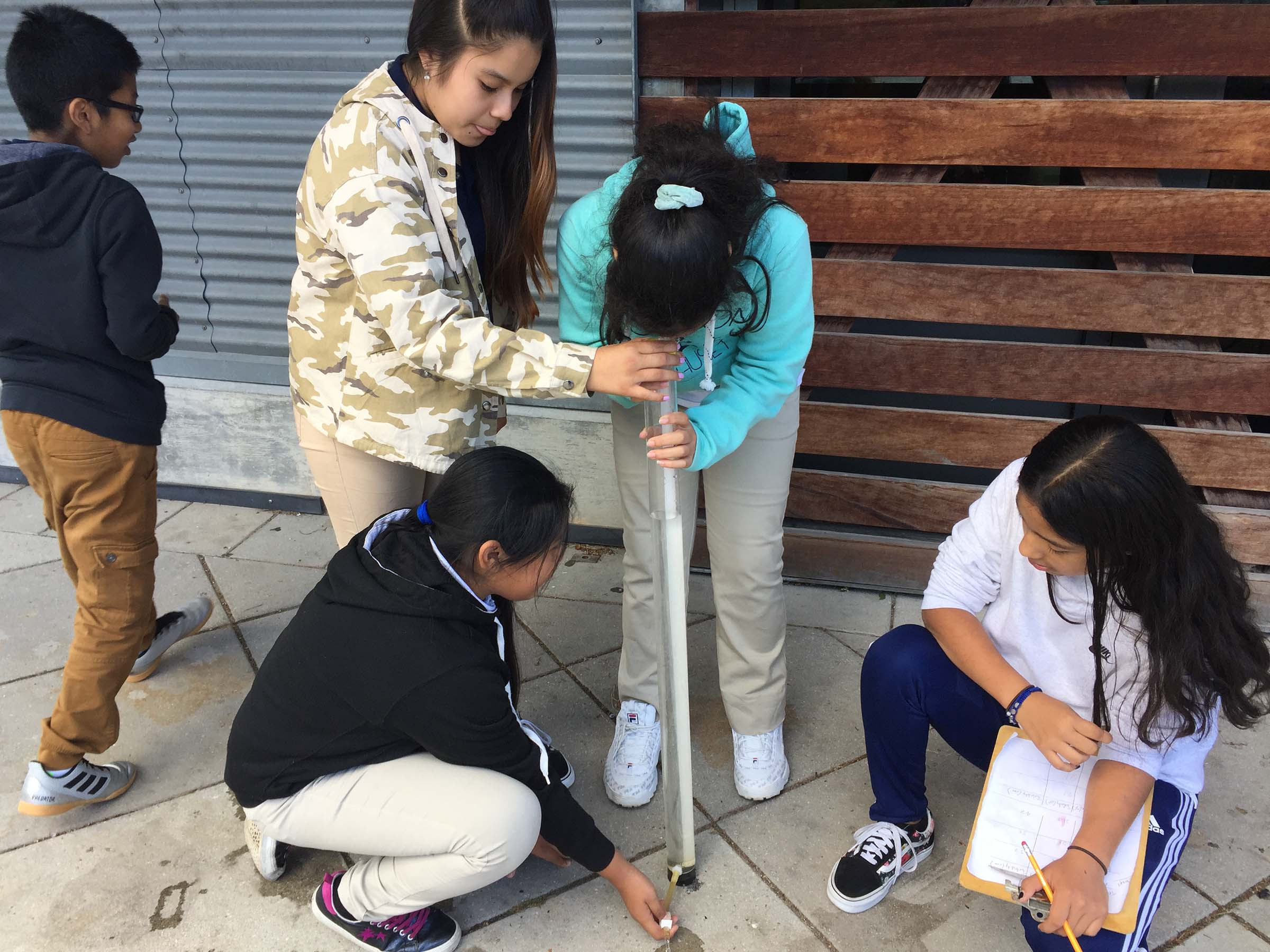 Students research the various Oysters found in the Hudson River
