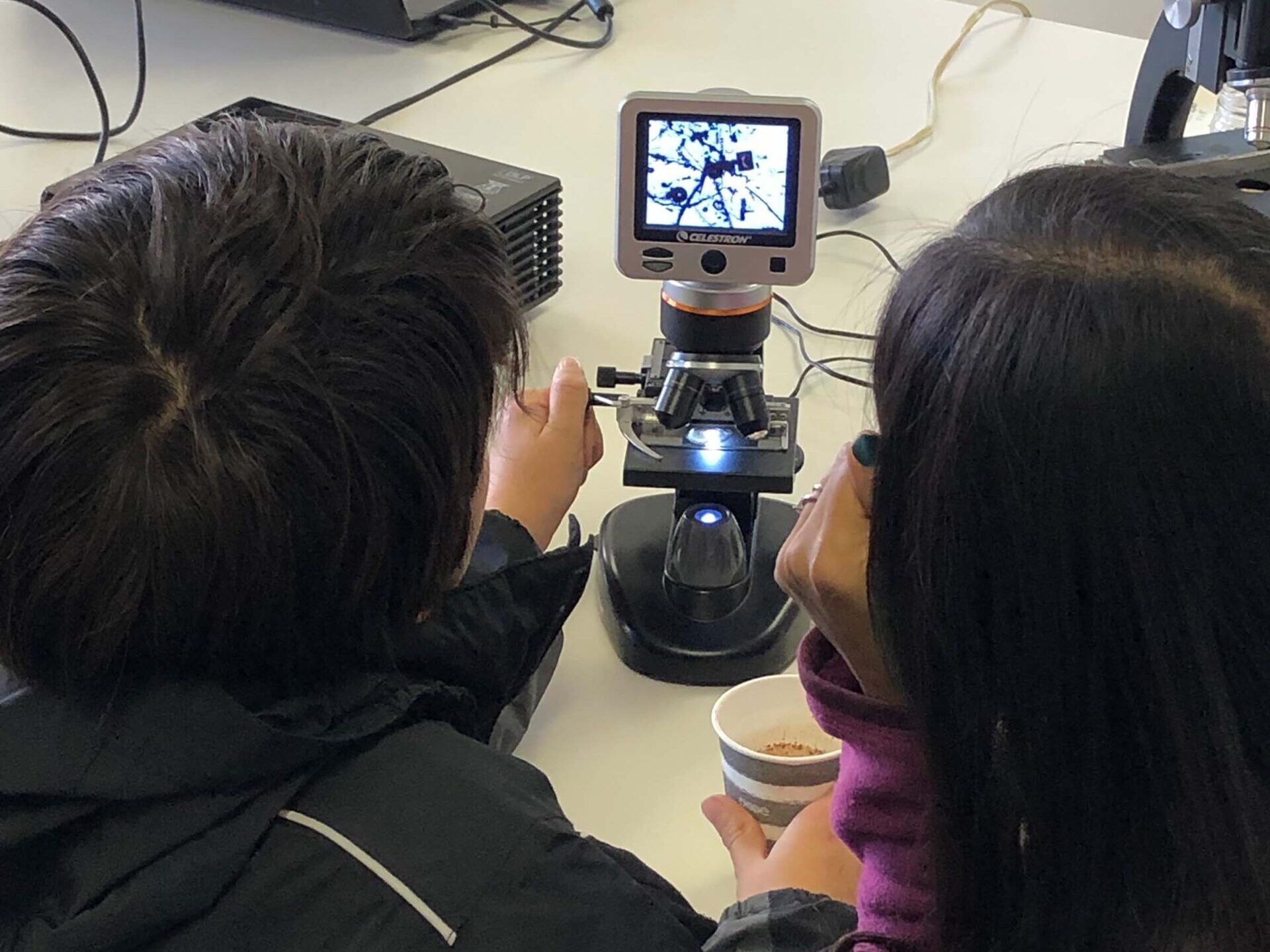 Students look at their findings in a microscope