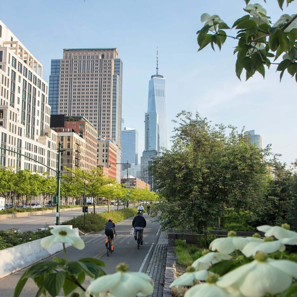 An image of the bikeway in tribeca with white flowers popping out of the trees