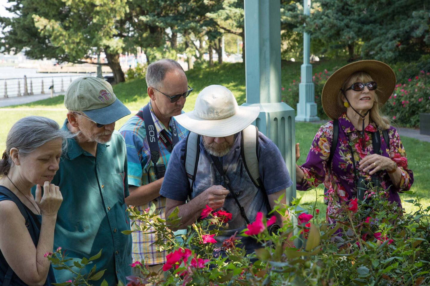 A group walk through the gardens and see nature in the Park