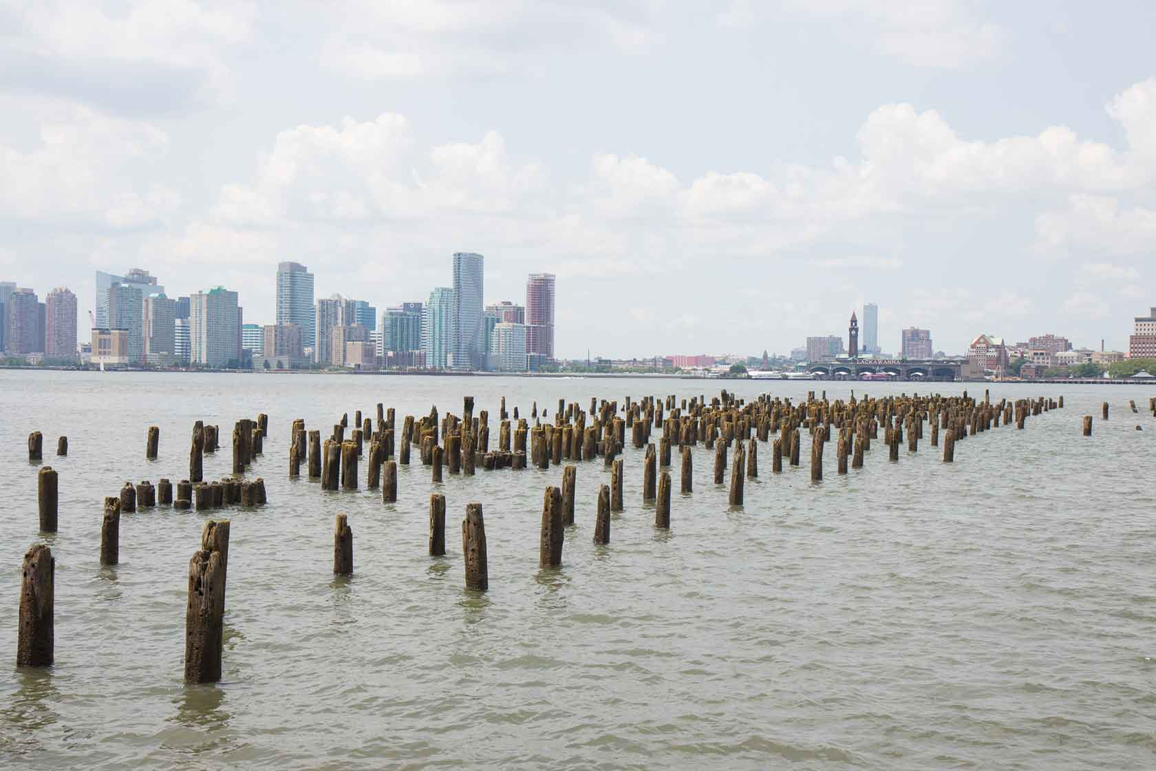 pile fields at the Hudson River