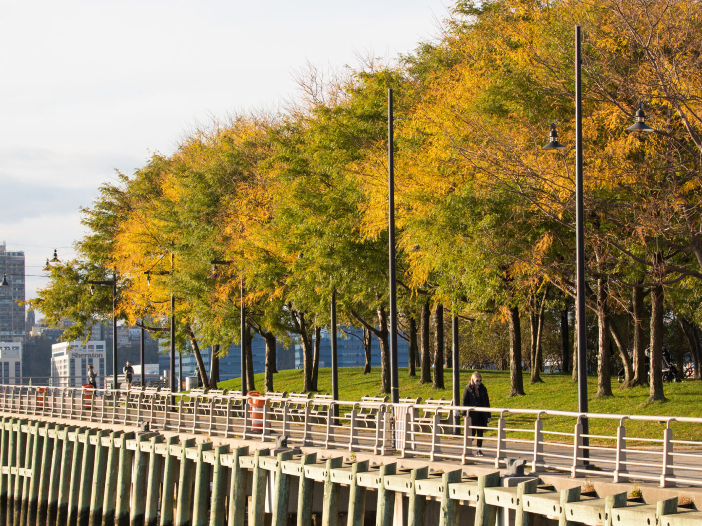 Pier 64 fall foliage side view 2020