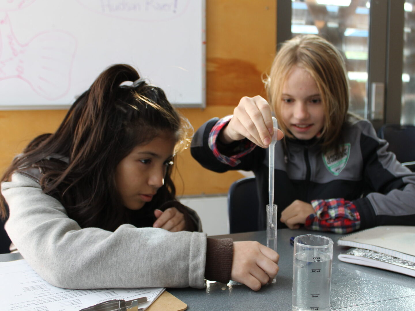 Students test water quality of a sample at Hudson River Park