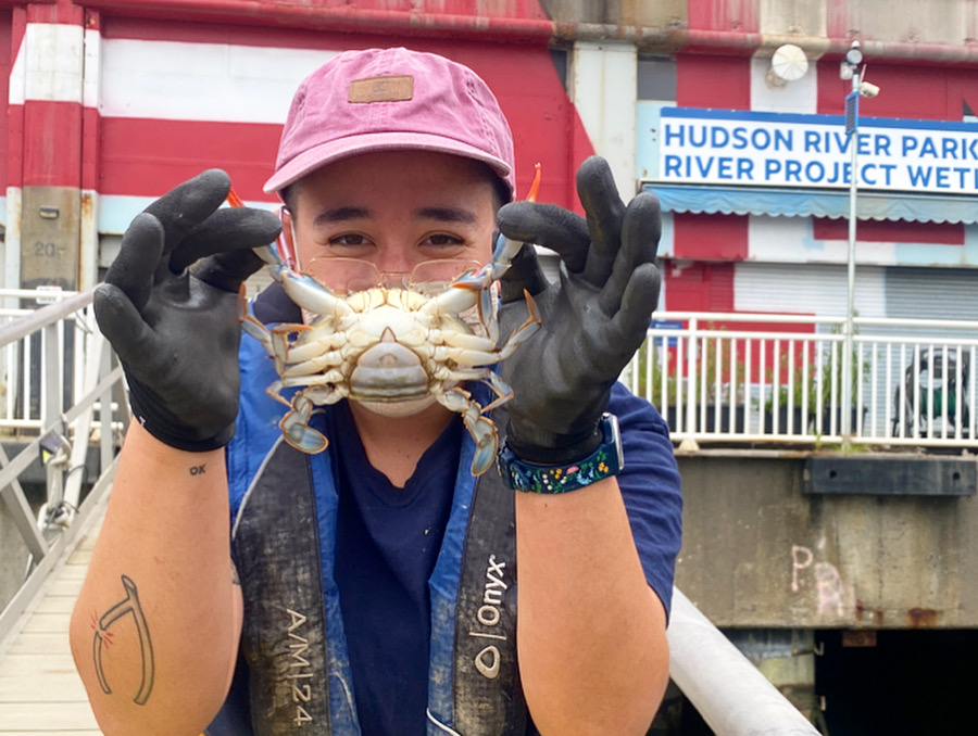 Hudson River Park educator simles while holding up a blue crab at SUBMERGE