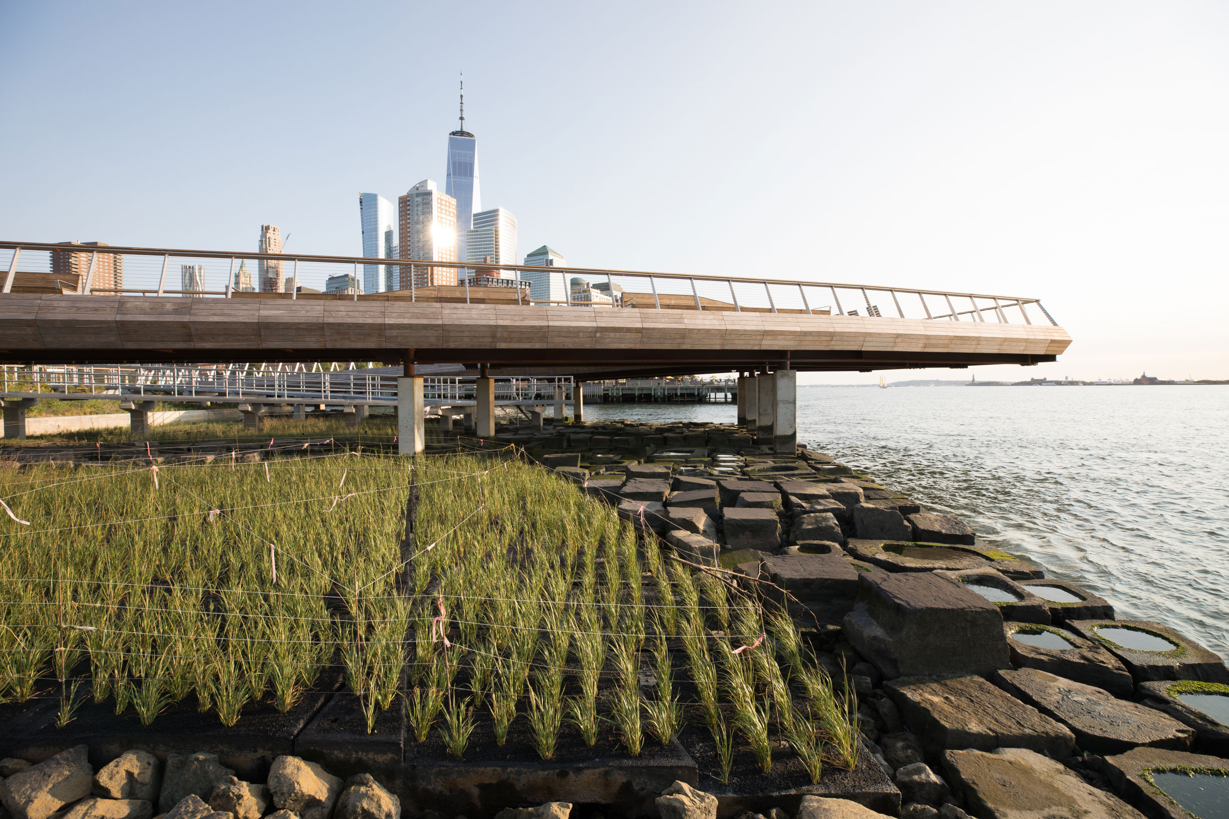 Pier 26 Tide Deck coastal environment at Hudson River Park